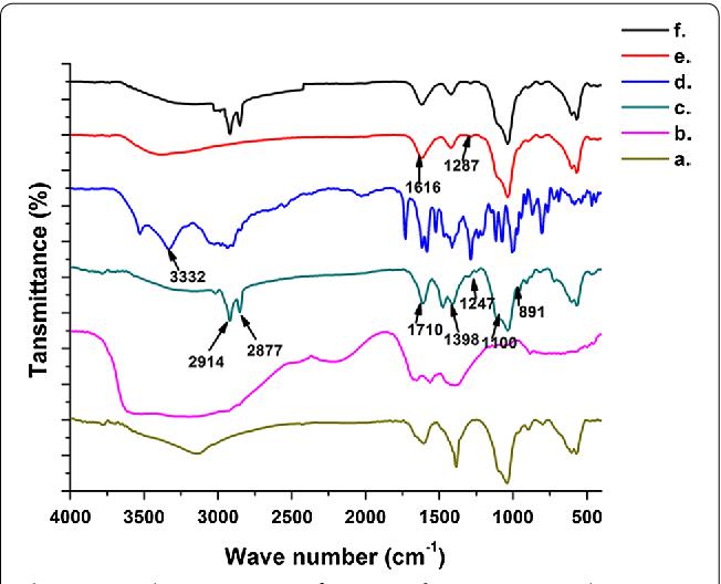 Fig. 2 FT-IR characterization of a m-HAP, b neat 6-gingerol, c 6-Gin-m-HAP, d neat doxorubicin, e Dox-m-HAP, f 6-Gin + Dox-m-HAP