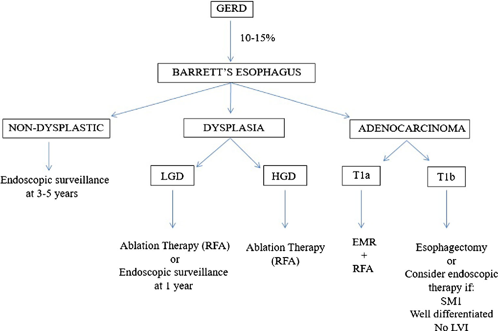 2 algorithm for the management of barrett's esophagus  gerd  gastroesophageal reflux disease,