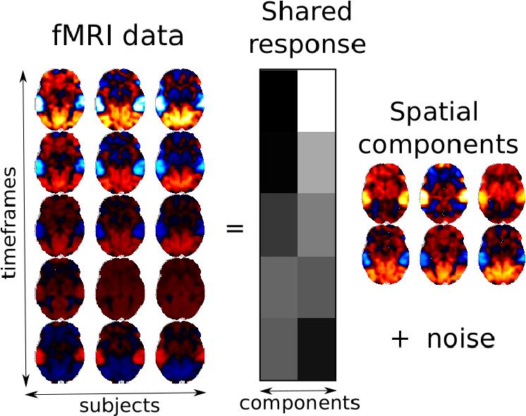Figure 1 for Fast shared response model for fMRI data