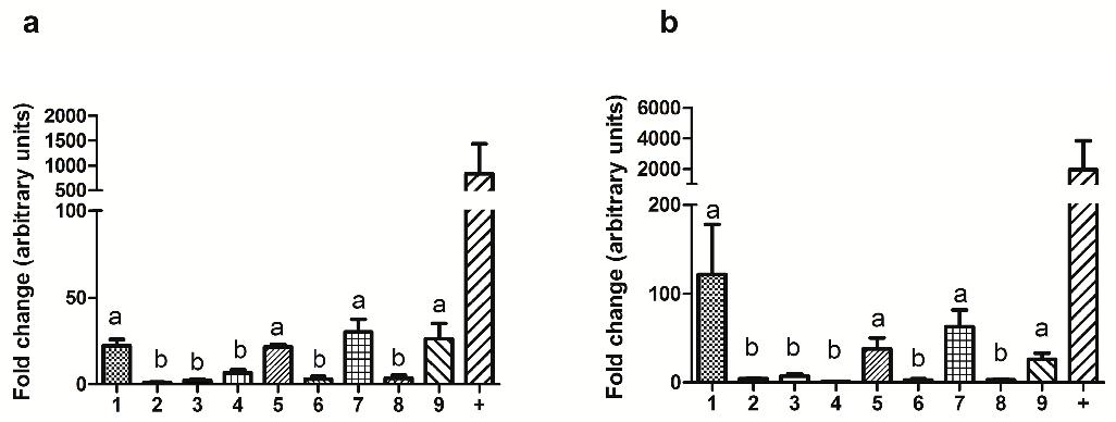 Melatonin mt1 and mt2 receptors in the ram reproductive tract figure 1 ccuart Gallery