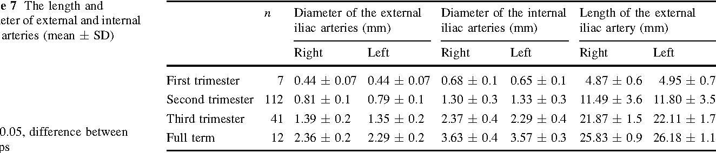 common external iliac artery