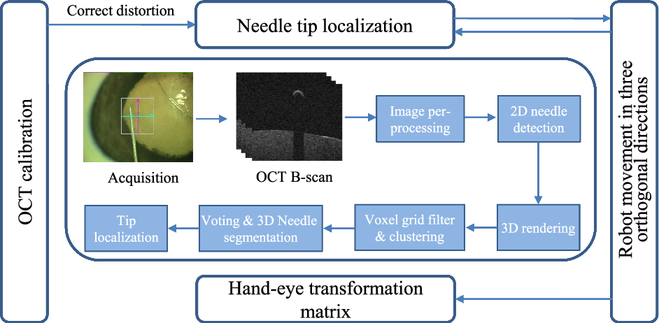 Figure 4 for Towards Robotic Eye Surgery: Marker-free, Online Hand-eye Calibration using Optical Coherence Tomography Images