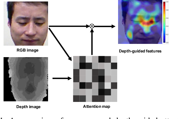 Figure 1 for Depth as Attention for Face Representation Learning