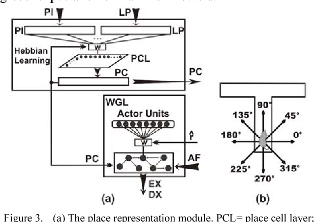Rat-inspired model of robot target learning and p recognition ...