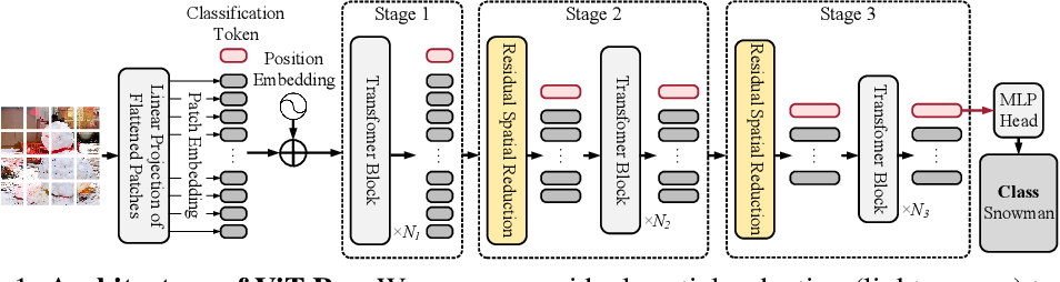 Figure 1 for Searching for Efficient Multi-Stage Vision Transformers