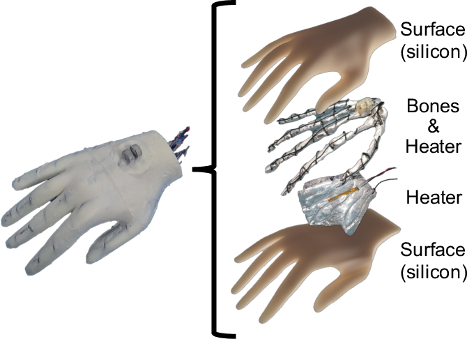 Figure 3 for Toward an Affective Touch Robot: Subjective and Physiological Evaluation of Gentle Stroke Motion Using a Human-Imitation Hand