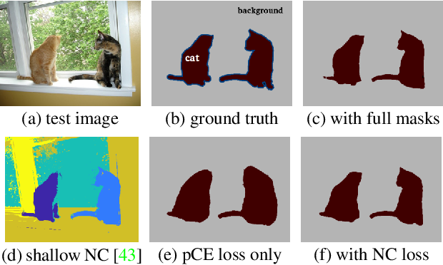 Figure 1 for Normalized Cut Loss for Weakly-supervised CNN Segmentation