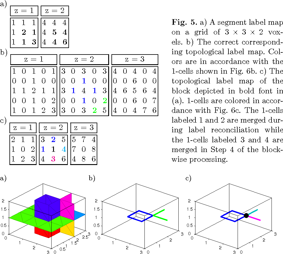 Figure 4 for How to Extract the Geometry and Topology from Very Large 3D Segmentations