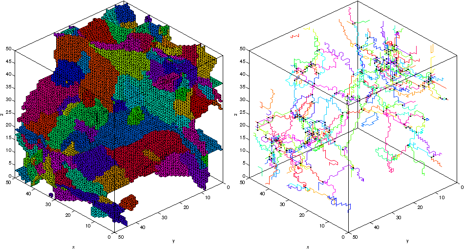 Figure 1 for How to Extract the Geometry and Topology from Very Large 3D Segmentations