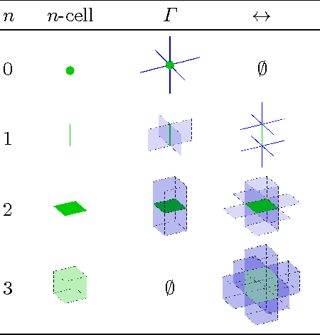 Figure 2 for How to Extract the Geometry and Topology from Very Large 3D Segmentations