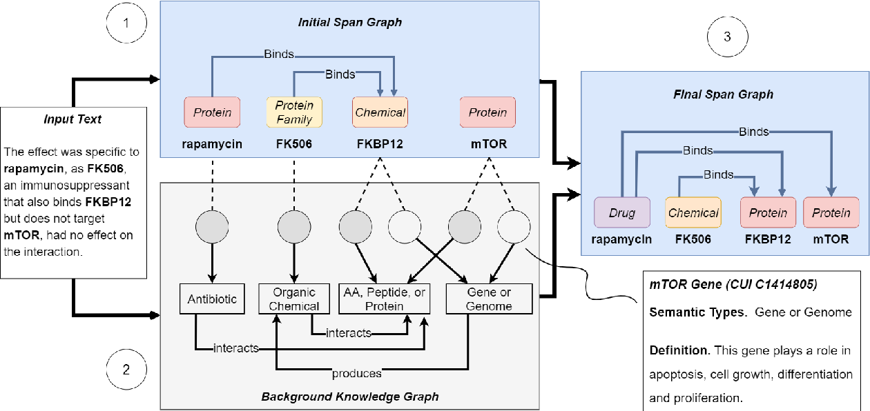 Figure 3 for Joint Biomedical Entity and Relation Extraction with Knowledge-Enhanced Collective Inference