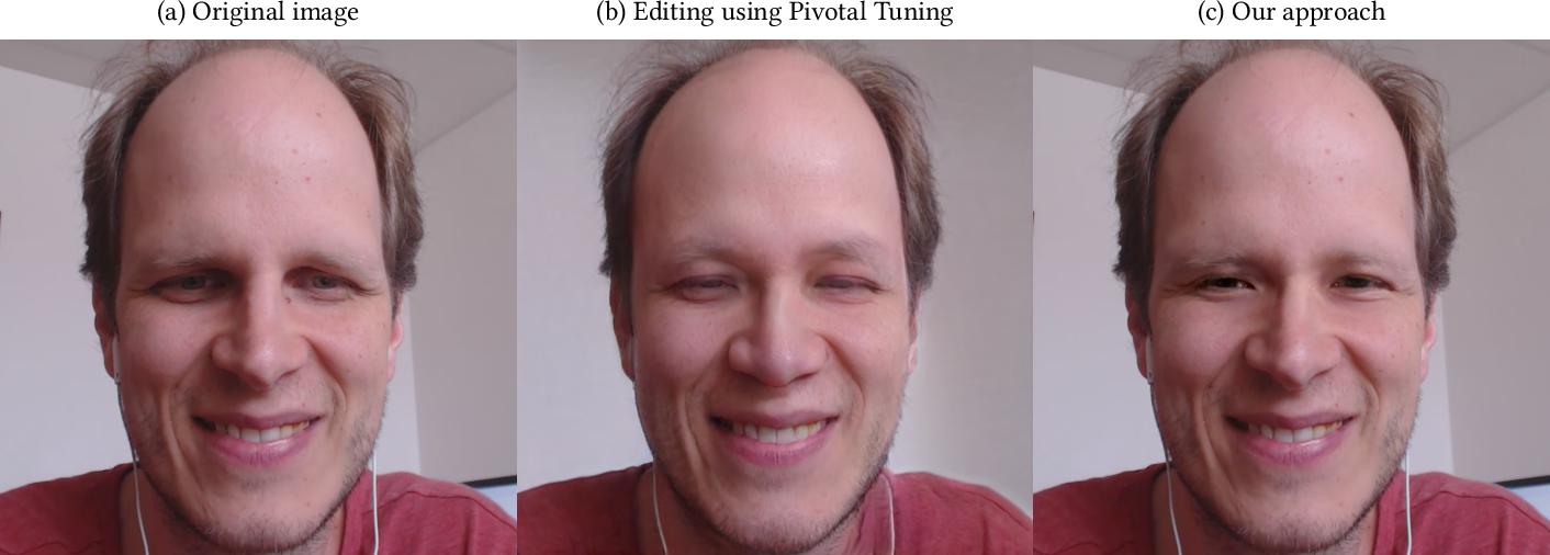 Figure 3 for Real Image Inversion via Segments