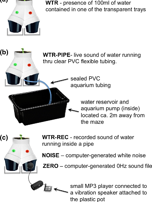 Tuned in: plant roots use sound to locate water - Semantic Scholar
