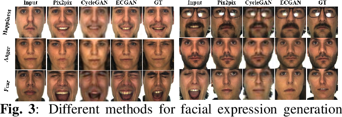 Figure 4 for Expression Conditional GAN for Facial Expression-to-Expression Translation