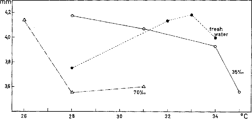 Fig. 2: Total length of newly hatdled C. rnacularius as a function of temperature and salinity