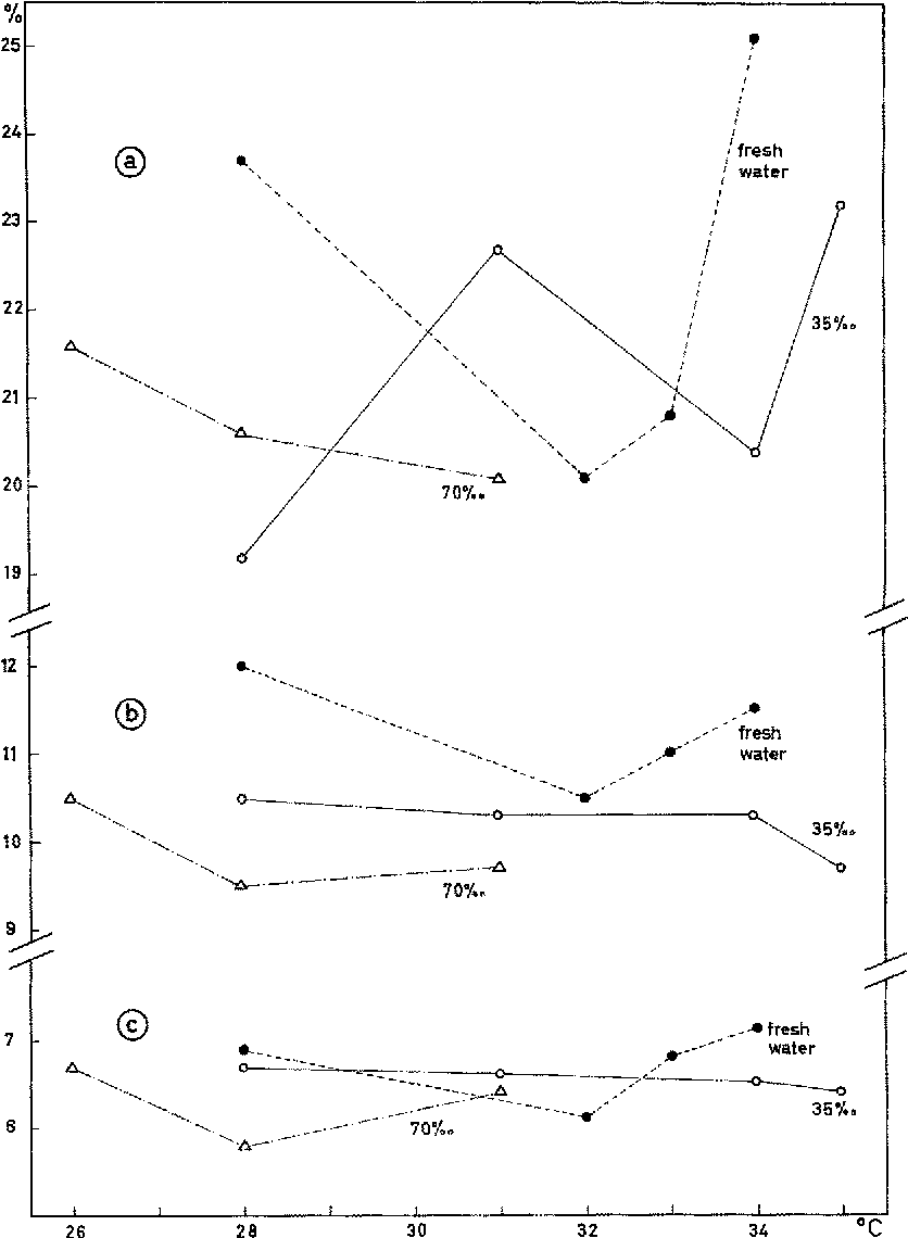 Fig. 4: Maximum body depth (a), minimum body depth (b) and caudal peduncle depth (c) of newly hatched C. macularius expressed as percentages of total length. Average values based on 6 to 8 individuals in each case