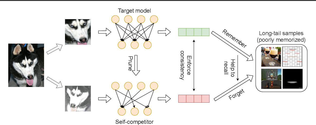 Figure 1 for Self-Damaging Contrastive Learning