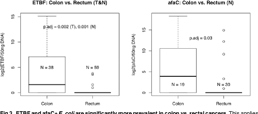 Fig 3. ETBF and afaC+ E. coli are significantly more prevalent in colon vs. rectal cancers. This applies to both tumour and normal tissue in the case of ETBF (FDR = 0.002, 0.001, respectively) and normal tissue only in the case of afaC (FDR = 0.03).