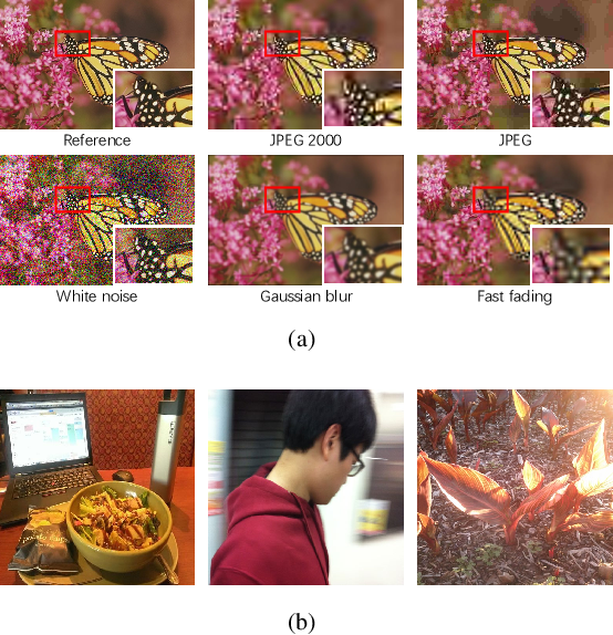 Figure 1 for Controllable List-wise Ranking for Universal No-reference Image Quality Assessment