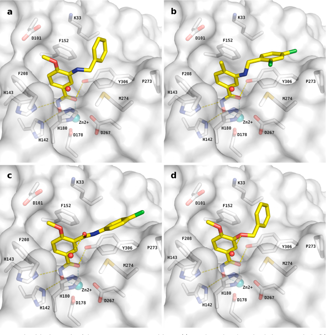 Figure 5. Predicted binding mode of the most potent HDAC8 inhibitors: (a) 4-methoxy-3-benzylaminobenzhydroxamic acid 8b, (b) 2,4- dichlorobenzylaminobenzhydroxamic acid derivative 8f, (c) inverted amide derivative 12b, and (d) 3-benzyloxybenzhydroxamic acid derivative 20a in human HDAC8. Ligands are colored in yellow, side chains of active site residues are shown as white sticks, the zinc ion is depicted as cyan ball, while the cocrystallized water molecule is shown as red balls. Hydrogen bonds are shown as yellow dashed lines, and coordination of the zinc ion is shown as pale-cyan dashed lines.