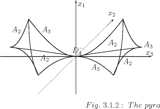 Fig. 3.2.1 : The caustic of a small perturbation of the hyperbolic umbilic