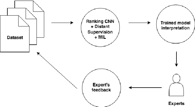 Figure 1 for Making Efficient Use of a Domain Expert's Time in Relation Extraction