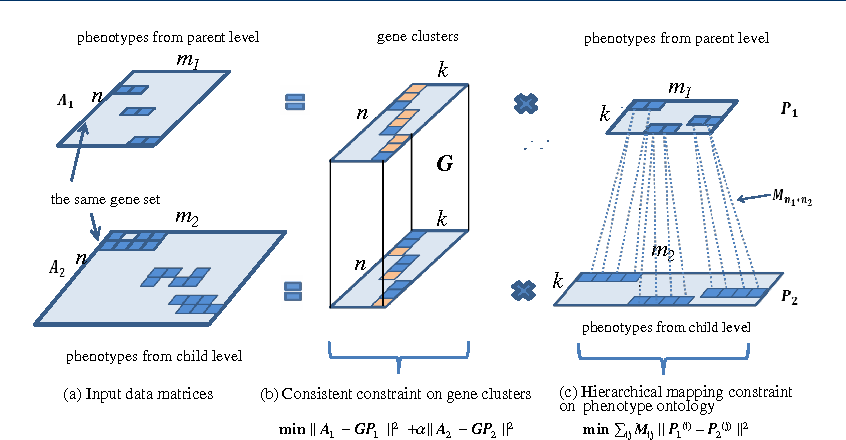 Figure 1 for Mining Functional Modules by Multiview-NMF of Phenome-Genome Association
