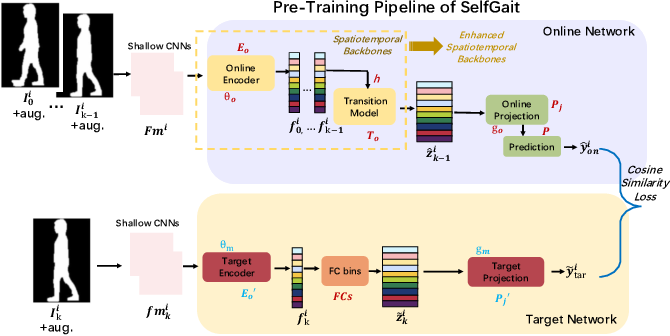 Figure 1 for SelfGait: A Spatiotemporal Representation Learning Method for Self-supervised Gait Recognition
