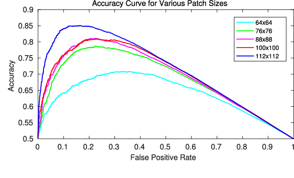 Figure 4 for Identifying Corresponding Patches in SAR and Optical Images with a Pseudo-Siamese CNN