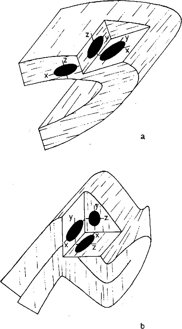 Figure 5 From Strain Determinations Using Deformed Radiolaria