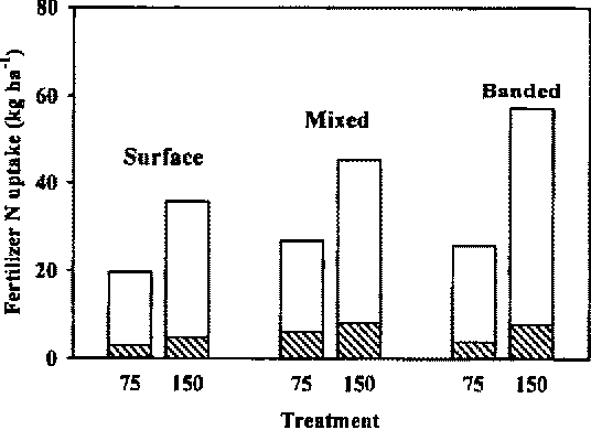 Figure 3. Uptake of fertilizer N by wheat crop, at 75 and 150 kg N ha - t application rates. N uptake by straw is represented by hatched areas, and that by grain by unshaded areas.