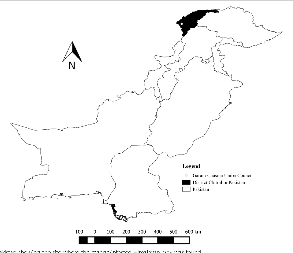 the threatening but unpredictable sarcoptes scabiei first deadly Himalayan Plateau Map the threatening but unpredictable sarcoptes scabiei first deadly outbreak in the himalayan lynx lynx lynx isabellinus from pakistan semantic scholar