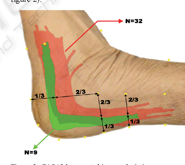 Figure 2 from Web-Based \'Computer Assisted Surgical Anatomy Mapping ...