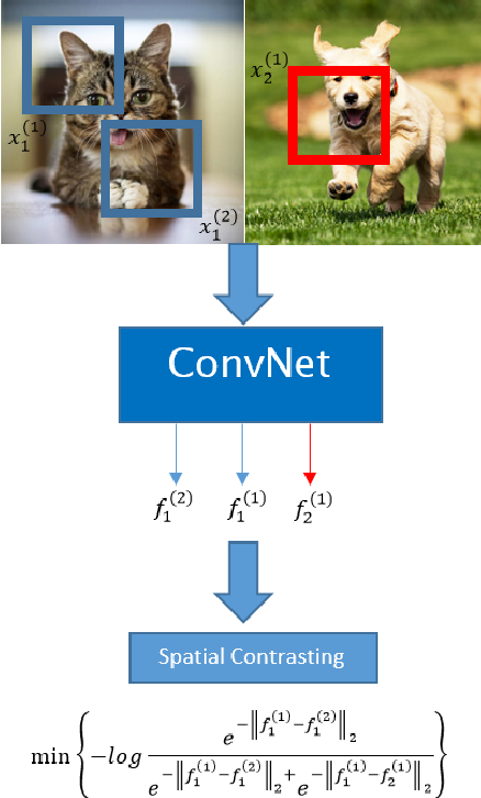 Figure 1 for Deep unsupervised learning through spatial contrasting
