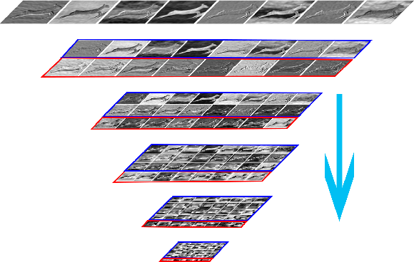 Figure 1 for Evenly Cascaded Convolutional Networks