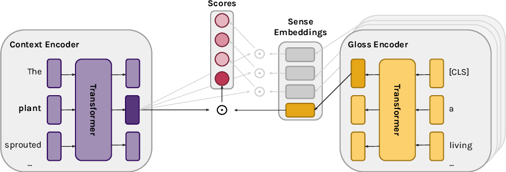 Figure 1 for Moving Down the Long Tail of Word Sense Disambiguation with Gloss-Informed Biencoders