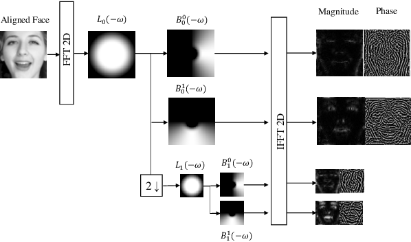 Figure 1 for MIMAMO Net: Integrating Micro- and Macro-motion for Video Emotion Recognition