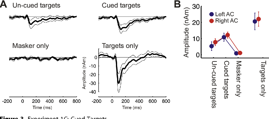 Figure 3. Experiment 1C: Cued Targets