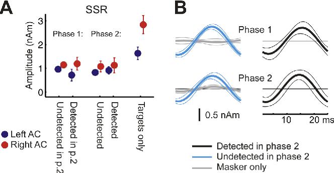 Figure 5. Experiment 2: SSR