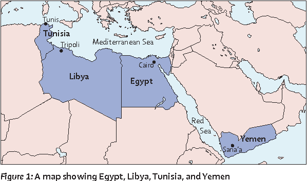 The path towards universal health coverage in the arab uprising figure 1 gumiabroncs Image collections