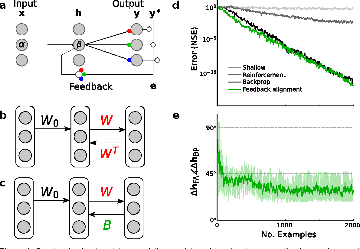 Figure 1 for Random feedback weights support learning in deep neural networks