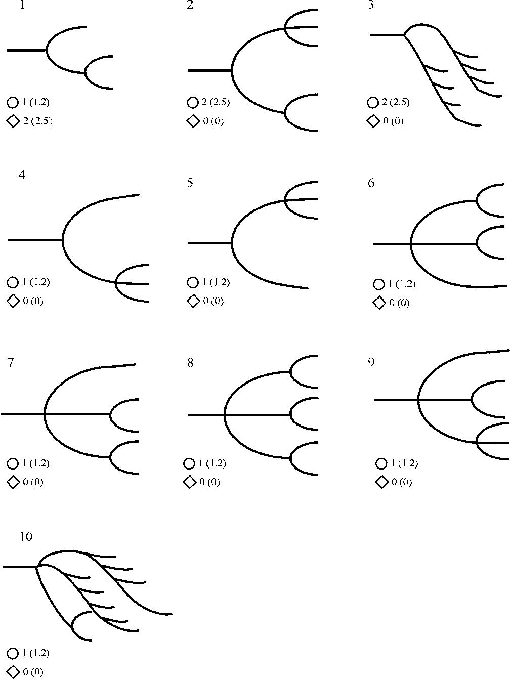 Peri-hilar branching patterns and morphologies of the renal artery ...