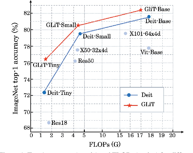 Figure 1 for GLiT: Neural Architecture Search for Global and Local Image Transformer