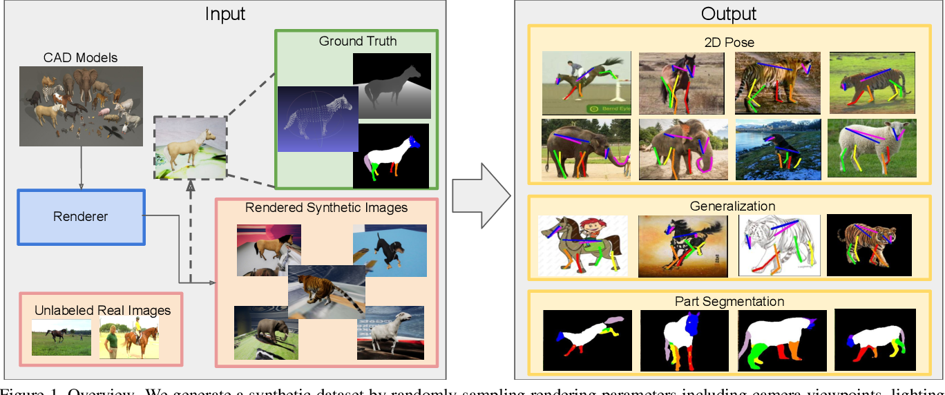Figure 1 for Learning from Synthetic Animals