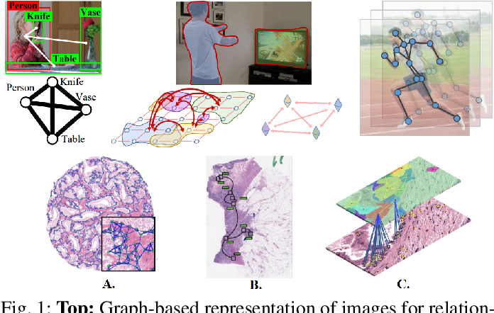 Figure 1 for A Survey on Graph-Based Deep Learning for Computational Histopathology