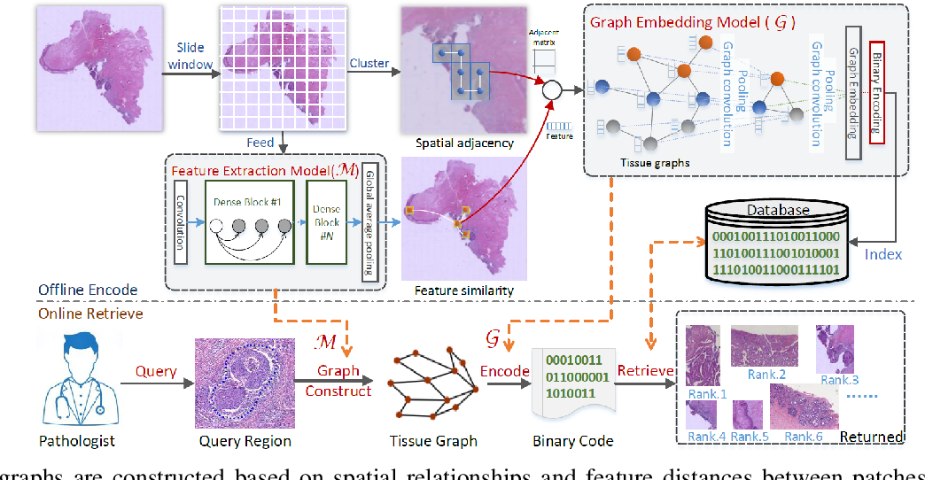 Figure 2 for A Survey on Graph-Based Deep Learning for Computational Histopathology