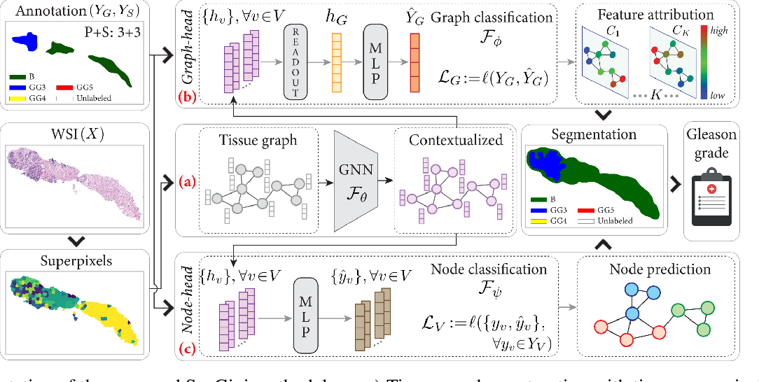 Figure 3 for A Survey on Graph-Based Deep Learning for Computational Histopathology