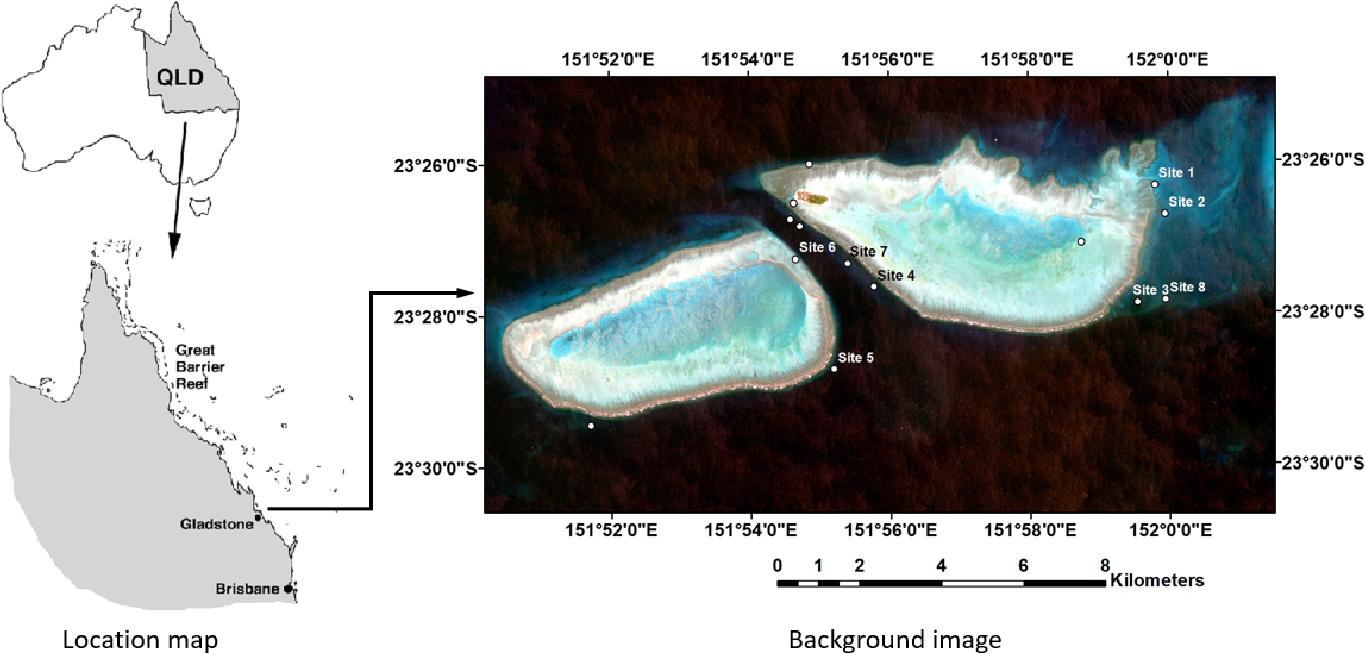 Figure 2 for Underwater Image Restoration via Contrastive Learning and a Real-world Dataset