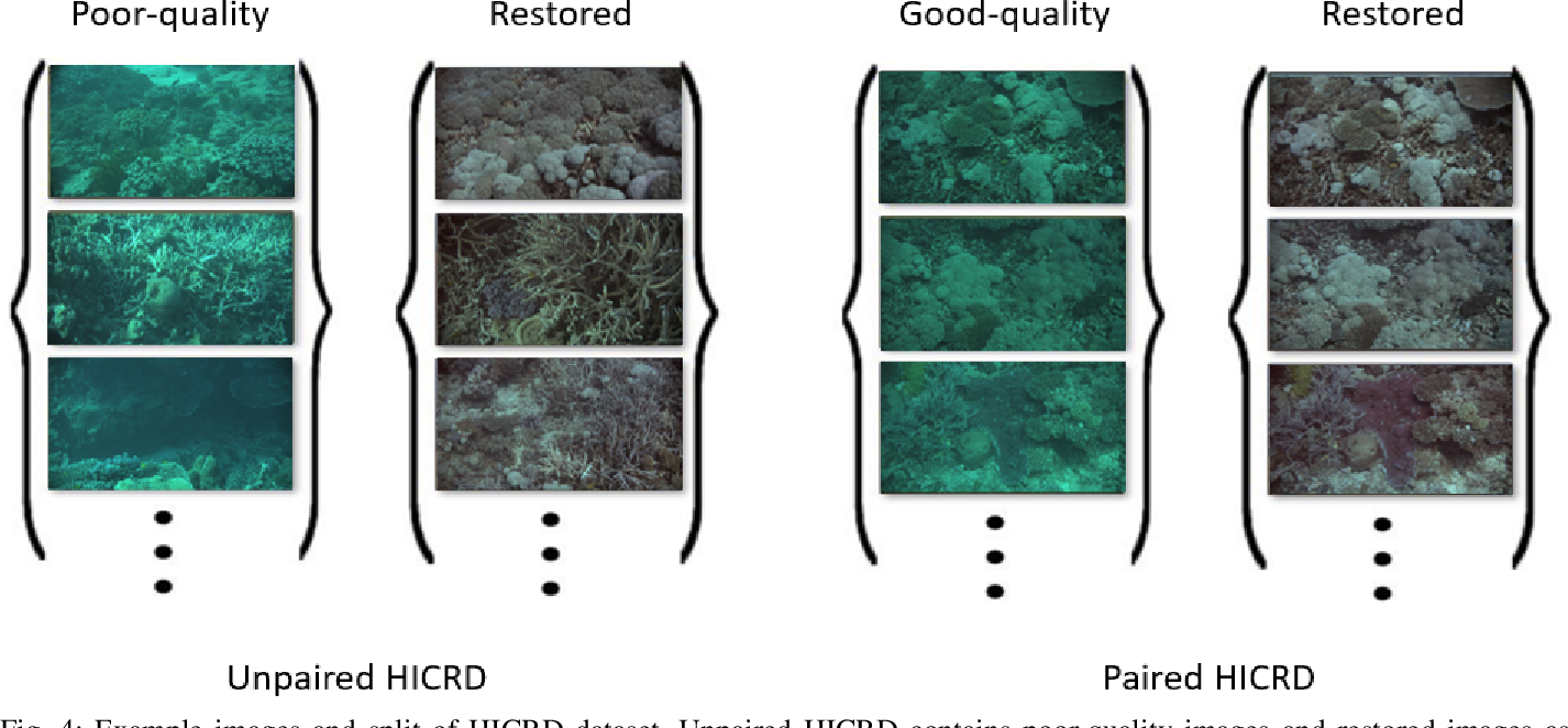 Figure 4 for Underwater Image Restoration via Contrastive Learning and a Real-world Dataset