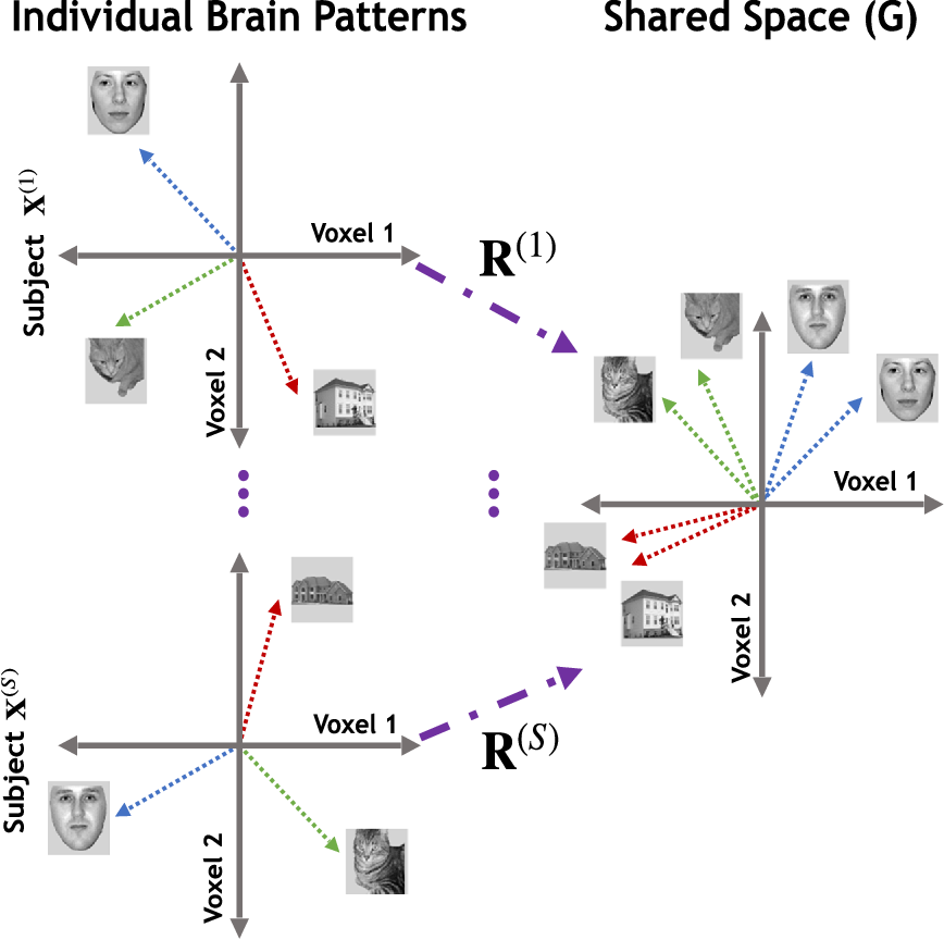 Figure 1 for Multi-Objective Cognitive Model: a supervised approach for multi-subject fMRI analysis